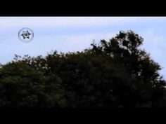 Continúan los Avistamientos Ovni en Sebastopol/ The new UFO sighting in Sebastopol https://youtu.be/crdeb8RLmoo