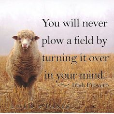 You will never plow a field by turning it over in your mind. #Irishproverb