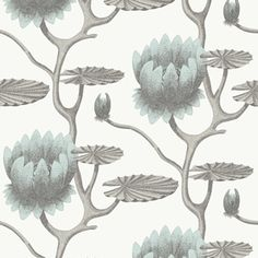 Summer Lily 95/4022 - Contemporary Restyled - Cole & Son Wallpaper