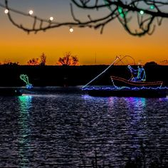 Winterfest Of Lights, Assateague Island National Seashore, Maryland Beaches, Ocean City Md, Isle Of Wight, New Adventures, Hotels And Resorts, The Great Outdoors, Natural Beauty