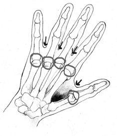 63 best skeletal system inspiration images skeletal system bone NOS Engine 5 mistakes artists make when drawing the hand cam sketchof hand