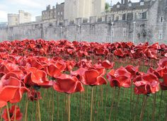 (20) Tweets about #ArmisticeDay hashtag on Twitter