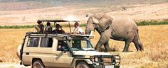 Africa travel safari booking trips in Tanzania. Book safari trip at southern circuit safaris Tanzania 4 x 4 game drives http://www.kili-tanzanitesafaris.com