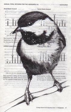 Chickadee Bar Graph  ink and pencil on found paper