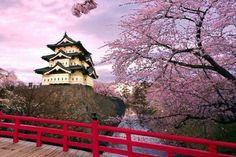 Excursiones por Japón y tour organizados en Español. Circuitos por Japón con guías turísticos para vijar por Japón al mejor precio. ❤️ Hiroshima, Monte Fuji, Reserva Natural, Tower, Building, Travel, Small Island, Japan Travel, Circuits
