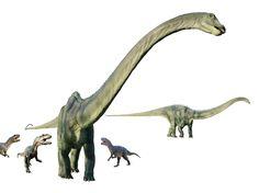 Allosaurus_vs_Diplodocus_diorama.jpg (3776×2816) - Dinosauria. Auteurs : Jakub Hałun et Taxiarchos228, 2006.