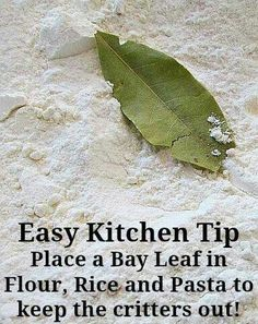 Keep critters out of flours and grains with a bay leaf.