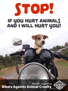 Bikers Againts Animal Cruelty!   Let's do it..three simple things…no cost at all.  1. Give a minute for animals crossing the road. 2. Pick up and find a shelter for homeless cats and dogs. 3. Learn about safety and defensive riding to avoid crash with animals.  Thanks..my bro! whooaah - See more at: http://news.bikerspit.com/post/93357609046/bikers-againts-animal-cruelty-lets-do-it-three#sthash.IA4oIrrz.dpuf