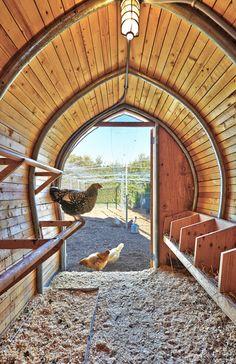Chicken Coop Kit, Chicken Home, Diy Chicken Coop Plans, Chicken Pen, Chicken Cages, Best Chicken Coop, Building A Chicken Coop, Chicken Garden, Small Chicken