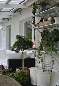 altan vitmålad tegel planteringsbord ljusslinga olivträd