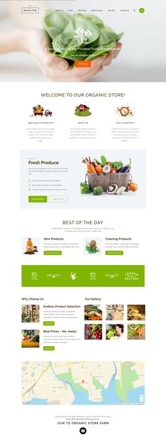 Organic Store - Organic Food & Eco Products Theme > Organic store is a colorful design perfectly suitable for #agricultural business, #ecotourism, healthy food blog, #organic food #shop, organic farm, bakery – anything you want!