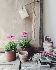 Cosiness: Potting bench - Sylvia Houben