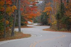 It just looks so serene.  I need a road like this everyday.