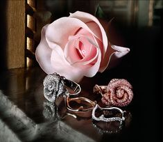 pink-roses-with-rings