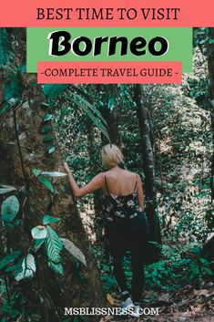 If you're a wildlife enthusiast and nature lover, Borneo island is one the best places to see. So when is the best time to visit Borneo? Borneo Travel, Malaysia Travel, Hawaii Travel, Asia Travel, Cool Places To Visit, Places To Travel, Travel Destinations, Travel Guides, Travel Tips