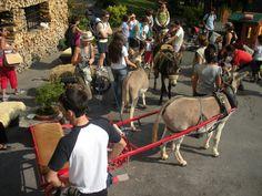 escursione con gli asini al family Hotel MiraMonti