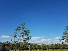 Clean blue sky☁ in Jeju island #Heaven's kingdom#God the mother
