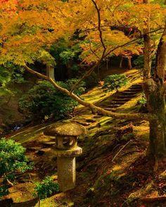 Another one from #shugakuinrikyu, November 2012 #autumn #foliage #kyoto #紅葉狩り #日本 #京都 #修学離宮 #神御茶屋