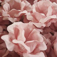Forminha floral para doces finos Beatriz, Celebrity Forminhas.