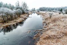 Winter Landscape by Katarzyna Szymanska