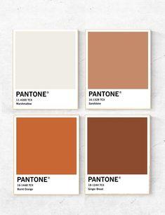 Pantone Colour Palettes, Orange Color Palettes, Burnt Orange Color, Colour Pallette, Colour Schemes, Pantone Color, Pantone Orange, Brown Colors, Brown Pantone