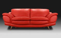 Take a look at this great Elsa 2 Seater Couch I found at UFO!