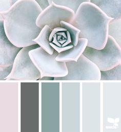 Best ideas for succulent art inspiration design seeds Bedroom Paint Colors, Bedroom Color Schemes, Colour Schemes, Color Combinations, Spa Colors, Calming Colors, Colours, Design Seeds, Colour Pallete