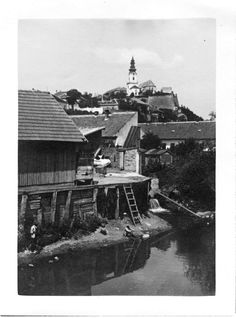 Foto z rodinného archívu. Old Photos, Europe, Cabin, History, House Styles, Fairy, Travel, Painting, Life