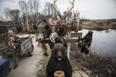 killer ape sells heads (1) | russia | 2013