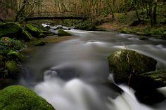 ruisseau du Tolerme