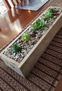 15 Amazing Ideas Adding River Rocks To Your Home Design PAGUPONKU is part of House plants decor - We can see some of the homes which have amazing ideas Those ideas are using adding river furniture Succulents In Containers, Succulents Diy, Planting Succulents, Succulent Gardening, Garden Terrarium, Succulent Planters, House Plants Decor, Plant Decor, Indoor Garden