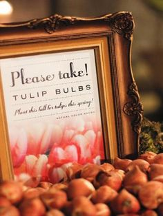 Tulip bulbs as wedding guest favorsTulip wedding inspiration, just in time for spring! via @weddingpartyapp