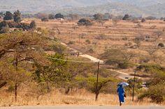 bleu Road-trip Afrique du Sud : de Ezulwini (Swaziland) à Skukuza (parc Kruger)
