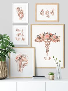 Graduation should be celebrated as the day of success, a long and challenging process. Law Office Decor, Office Art, Speech Therapy, Speech Therapist Salary, Speech Pathology, Wall Decor, Room Decor, Online Printing Services, Walmart Photos
