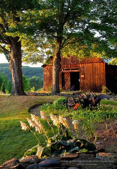 A very well manicured barnyard...: