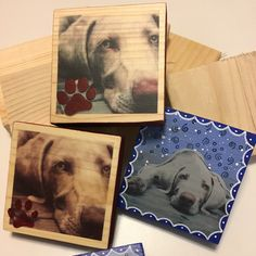 A new Weimaraner in our home and a box of scrap wood has been the inspiration for some new art in my shop! A portion of the sale of weim products in my shop will be donated to Great Lakes Weimaraner Rescue to support the good work they do.