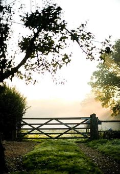 This farm gate reminds me of Texas, which is where I'm from and one reason why I love it so much!!! <3