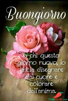Buongiorno Immagini belle per Whatsapp 100 Morning Quotes Images, Good Morning Quotes, Rose In Italian, Good Morning Flowers Rose, Italian Greetings, Mourning Quotes, Italian Quotes, Beautiful Morning, Day For Night