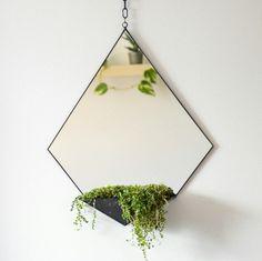 Geometric mirror & terrarium.