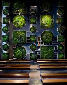 Jardines especiales: dentro o fuera de casa...