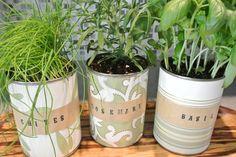 DIY Mini Indoor Herb Garden