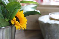 Mykonos, Stone Texture, Cool Bars, Turquoise Color, Interiores Design, Flower Arrangements, Restaurant, Natural, Decor