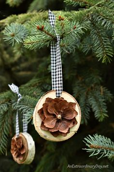 DIY natural rustic Christmas tree decorations. Don't miss the tutorial for making these pretty birch and pine cone ornaments