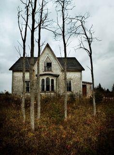 I want a house to make my home... does not have to be fancy just a place that I can be happy and start a new chapter of my life!         This old abandoned house could be so BEAUTIFUL with some TLC!!  It is just my style!