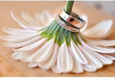 www.delunademiele.es Porque el dia de tu boda es el mas especial de tu vida... que todo sea diferente, unico y magico.