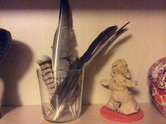 Verzamel zijn gevonden veren en zet deze in de kijker.