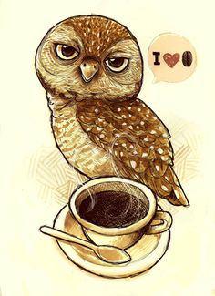Eu Amo Café - I Love Coffee Owl Pinned by www.myowlbarn.com