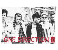 One Direction Pillow Cover For Sale, Free Shipping Rectangle Pillowcase (20x30)