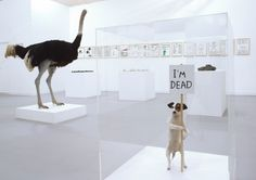 Shrigley @ Frieze