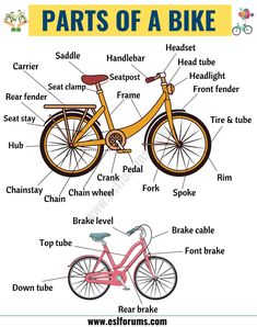 Bicycle Parts: Important Parts of a Bicycle with ESL Picture - ESL Forums Learning English For Kids, English Lessons For Kids, Kids English, English Language Learning, English Study, Teaching English, English Vocabulary Words, Learn English Words, English Grammar